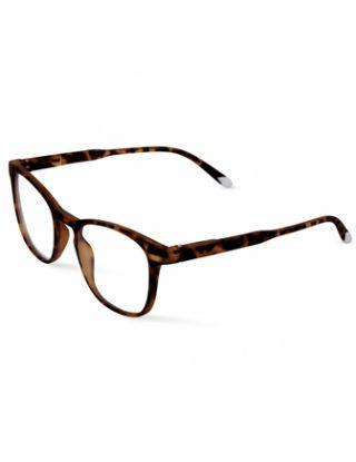 Barner Dalston Screen Glasses - Tortoise