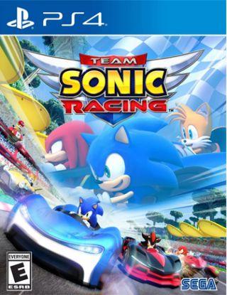 TEAM SONIC RACING R1